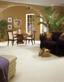 carpet flooring in Miamisburg, OH